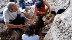 Откриха най-древната пивоварна