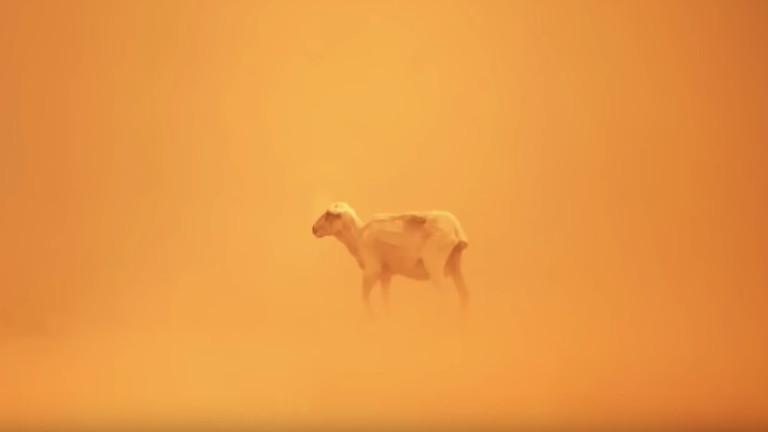 Снимка: Apple показа способностите на iPhone XS в невероятно видео
