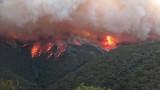 Пожарите в Австралия – като в ада, дори шосетата се топят