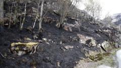 Изключително необичайно за април: Голям горски пожар в Норвегия
