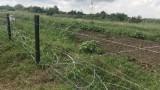 Изградиха 81 км от оградата по границата с Румъния срещу диви свине