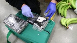 Рекордно количество кокаин, скрит сред банани, задържаха в Полша