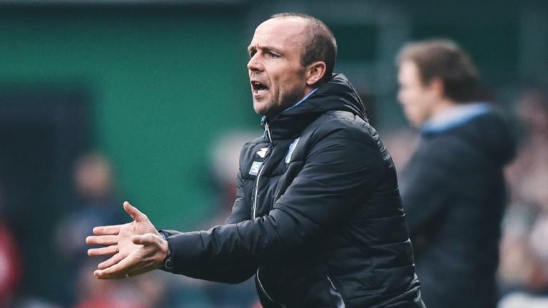 Германският Хофенхайм официално назначи Алфред Шрьодер за треньор на отбора