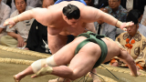 Аоияма събори по лице Таканошо на Големия ноемврийски турнир във Фукуока