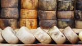 Казу марзу, Сардиния и каква е тайната на най-опасното сирене на света