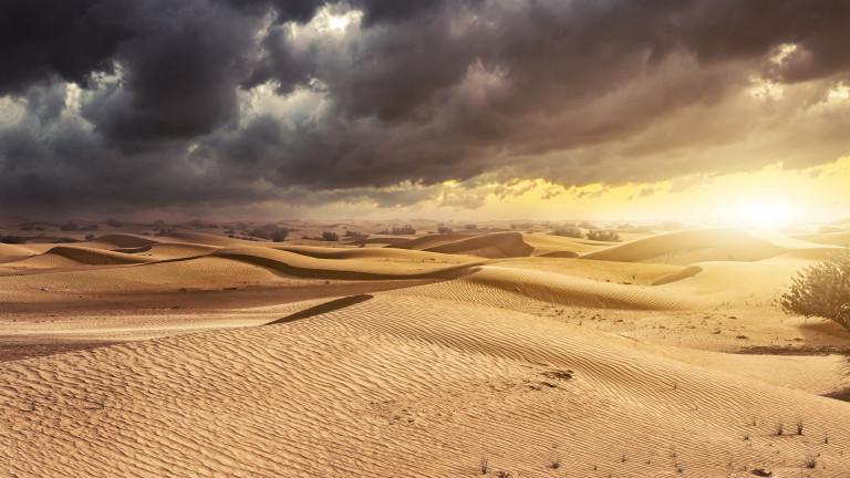 Пустинята Сахара се е разраснала на юг с 10 процента