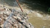 Измира рибата в река Тунджа, възможно е и химическо замърсяване