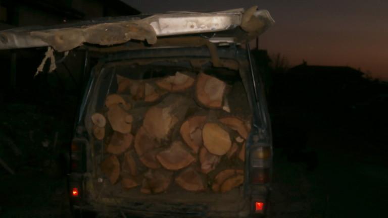 Задържаха двама системни нарушители на горското законодателство в Ловешко. Това