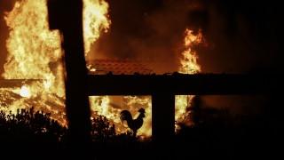 Пожар изпепели трактор и 3 тона пшеница в Сунгурларе