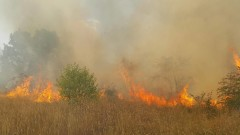 При пожара в София изгорели 5 дка сухи треви