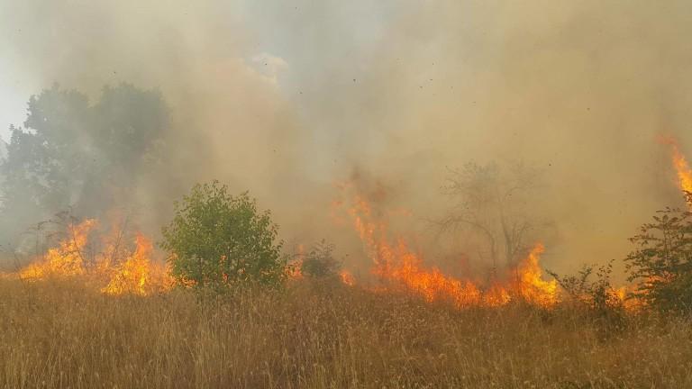 Затвориха пътя Силистра-Алфатар заради пожар