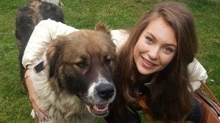 Никол Станкулова спасява бездомни кучета