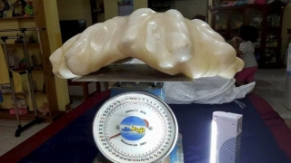 Във Филипините откриха най-голямата перла в света, тежаща невероятните 34 кг