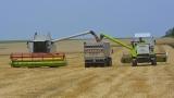 5 млн. лева за нисколихвени кредити получават зърнопроизводители