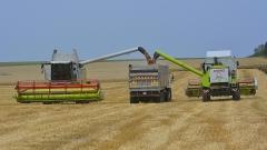 Рекордна реколта от пшеница е прибрана това лято