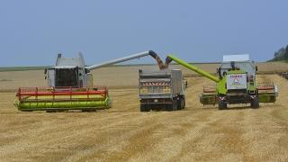 В САЩ дават на фермерите $7милиарда помощи въпреки рекордните реколти