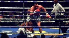 """""""Братя Кличко унищожиха тежката категория в бокса"""""""