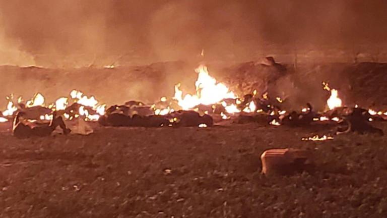 Взрив е избухнал на петролопровод в Мексико. Десетки са убитите