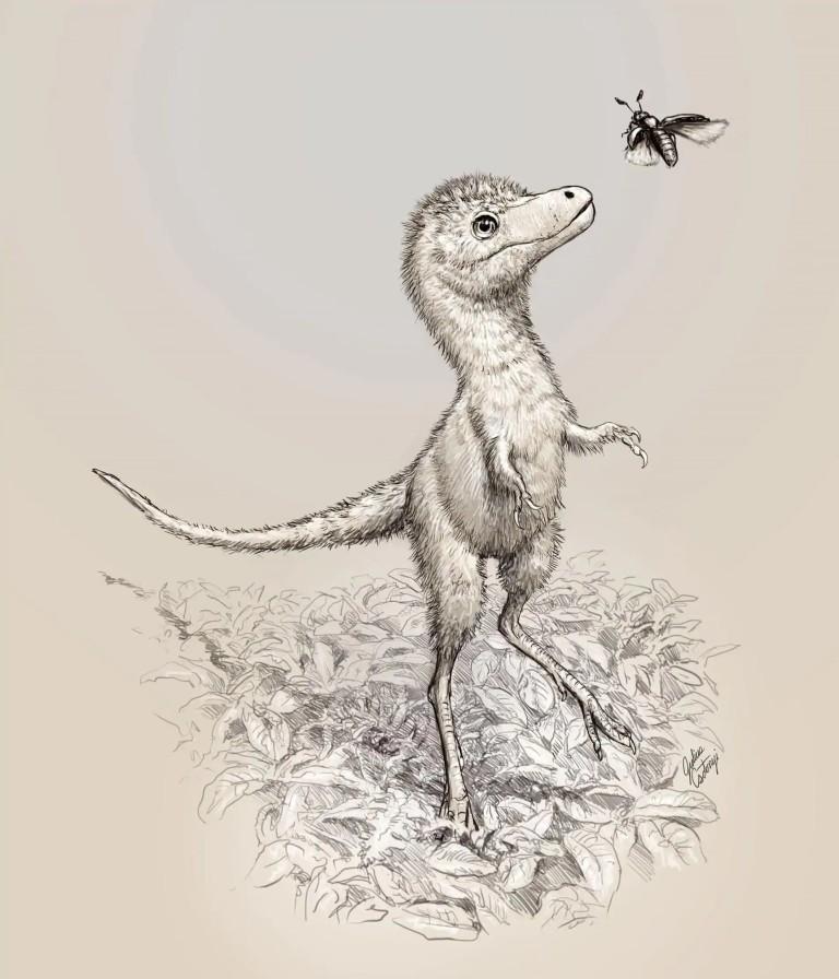 Илюстрация как може би е изглеждало бебе тиранозавър