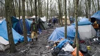 """Ситуацията в Кале ескалира, разрушаването на """"Джунглата"""" продължава"""