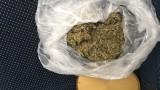 Хванаха 20 кг марихуана при спецоперация в Разградско