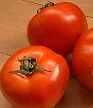 В Пазарджик раздават безплатни домати