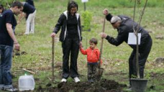 Над 500 дръвчета засаждат край Белозем