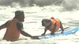 Кучета се състезаваха със сърфове (ВИДЕО)