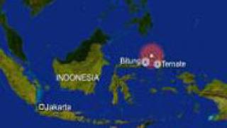 Земетресение с магнитуд 6,6 разтърси индонезийски остров