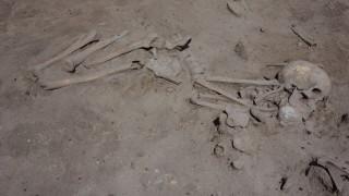 Откриха раннонеолитен гроб на 7 600 години в селище Слатина