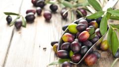 Новата търговска мишена на Тръмп – испанските маслини