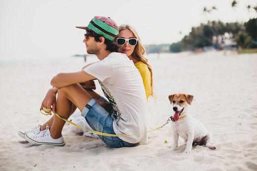 Стартира БГ мобилно приложение за срещи на домашни кучета