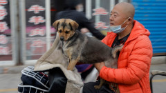 """Пекин забрани """"нецивилизованото"""" поведение, за да подобри хигиената"""
