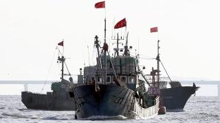 Рибата в Черно море все по-малко