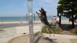 Австралия регистрира най-топлия ден в историята си