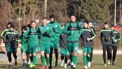 Мартин Камбуров и Алфредо Мартинс стартираха тренировки с Берое