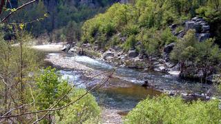 Българин получи международна награда за опазване на околната среда