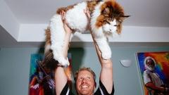 Самсон е най-голямата котка в света (СНИМКИ)