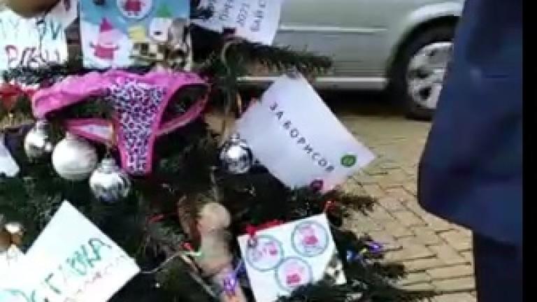 Претрупана Коледна елха срещу парадния вход на сградата на Министерския