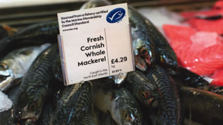 На последно място сме в Европа по консумация на риба и плодове