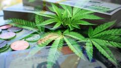 Канабис секторът може да стигне до приходи от $200 милиарда за десетилетие