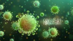 Коронавирус: Ключови симптоми ли са загубата на обоняние и вкус?