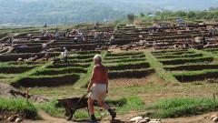 Магистралите разрушават археологията, скочиха експерти