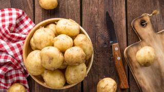 Картофопроизводители обжалват условията за кандидатстване за субсидии