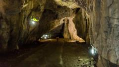 Геномен анализ на останки от България разкри неизвестна древна човешка миграция в Европа