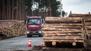 """Германски съд даде зелена светлина на """"Тесла"""" да изсече гора за завода си до Берлин"""