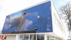 Графит на брадатия лешояд посреща гостите на Пловдив