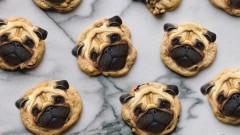Куче на сладкиш