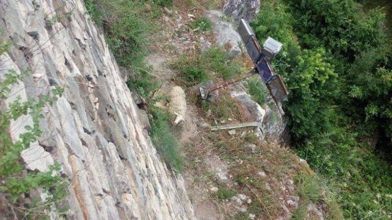 Стадо овце падна от историческата крепост Царевец във Велико Търново,