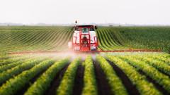 Париж и други градове забраниха използването на пестициди